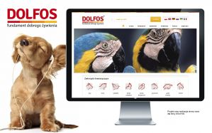 Agencja Reklamowa Niceday, projekt graficzny strony www Dolfos